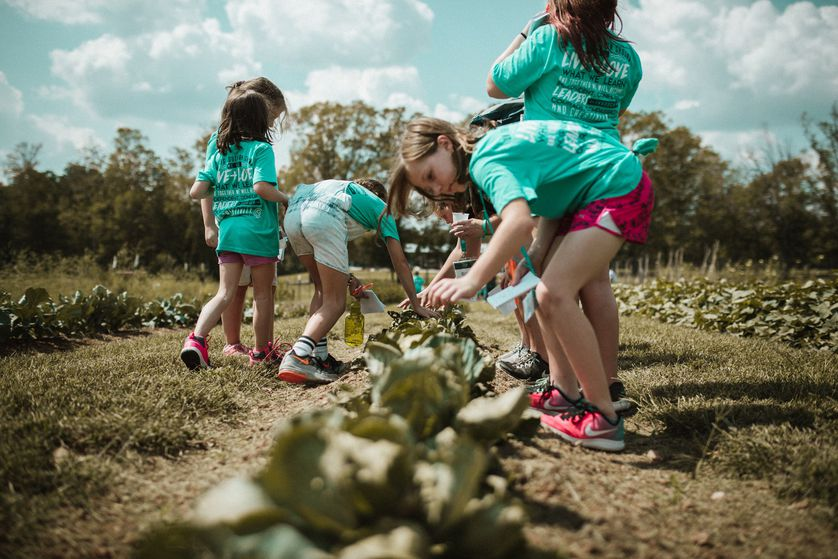 kids pick veggies at farm