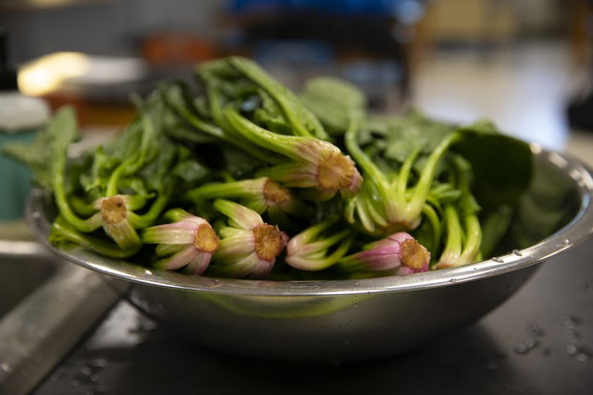 bowl of bok choy