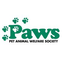 PAWS CT