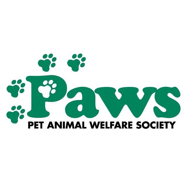 PAWS CT logo
