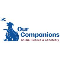 Our Companions Animal Rescue