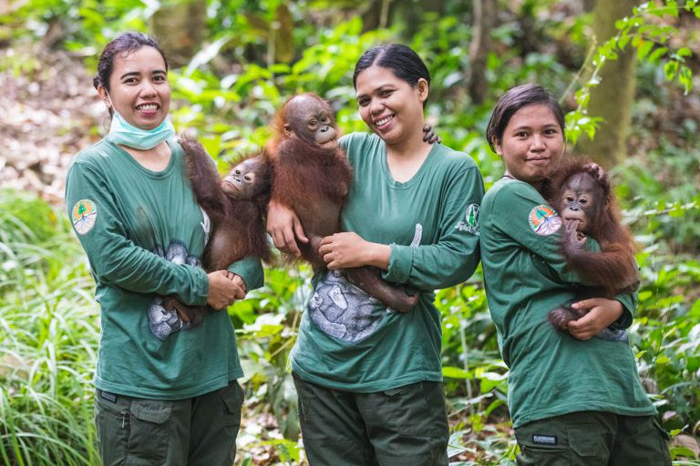 three women hold baby orangutans in the forest