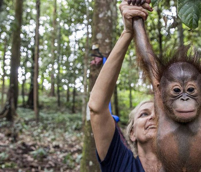 World-renowned primatologist Dr. Signe Preuschoft and a baby orangutan