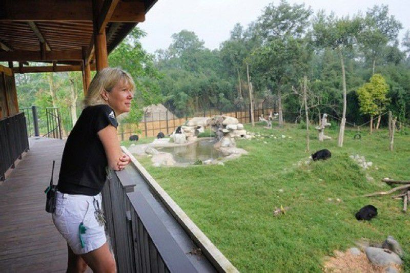 Robinson looks out at bear sanctuary