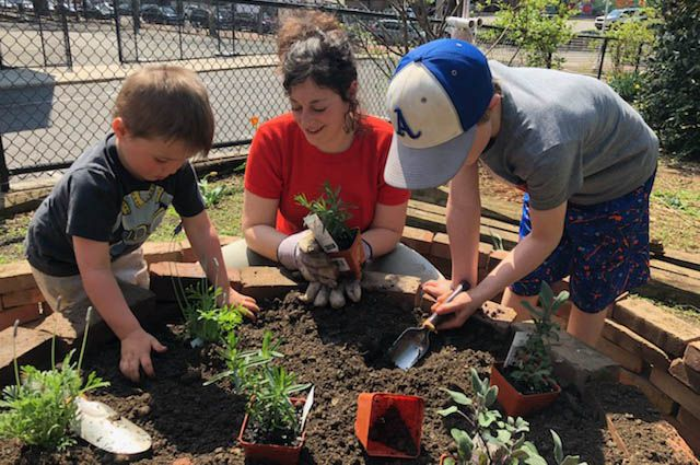 Adult helps two small children plant edible plants