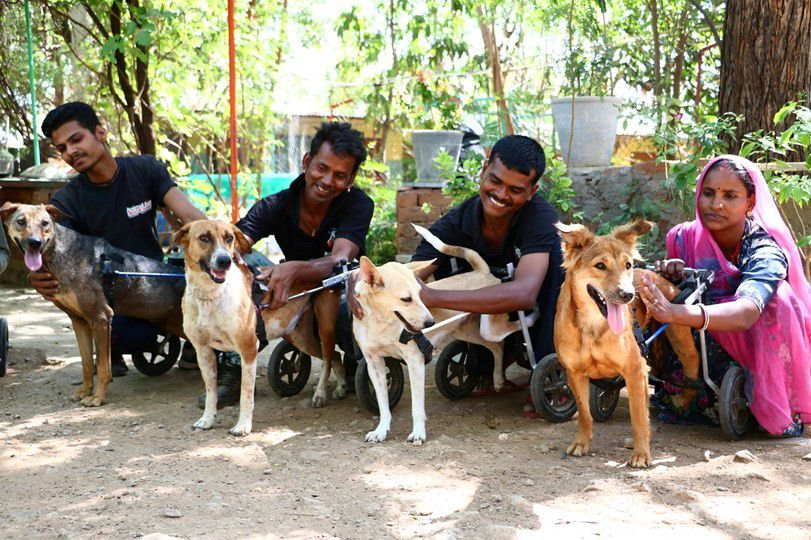 group of Indian people with dogs