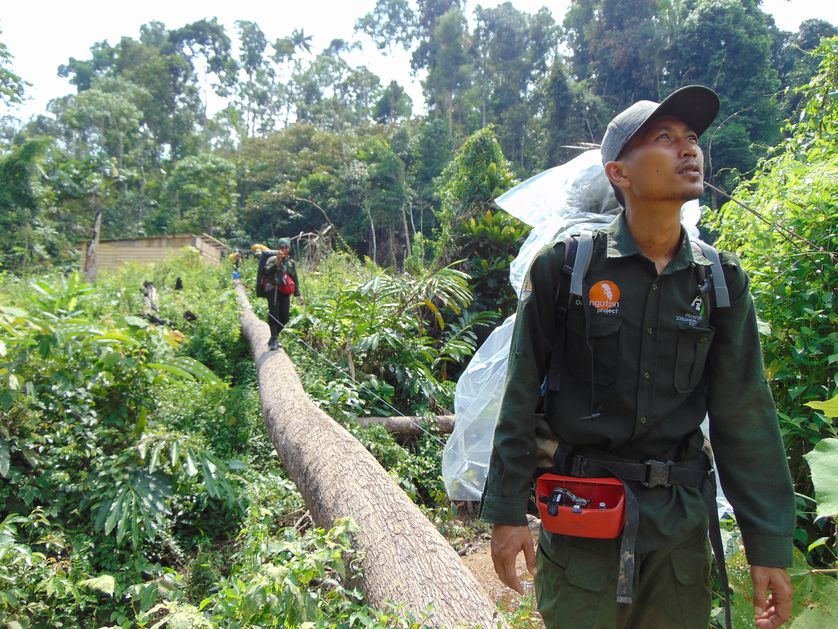 wildlife protection units in indonesia