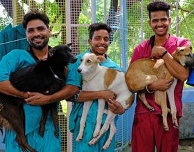 Animal Aid workers holding dogs