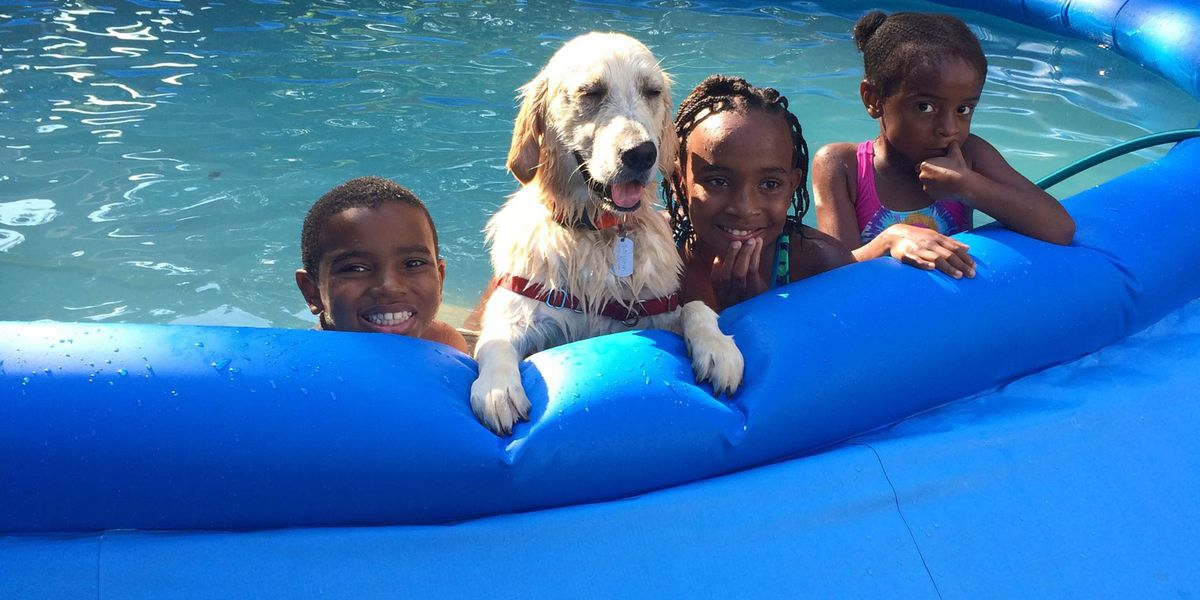 North Star Foundation dog with children in pool